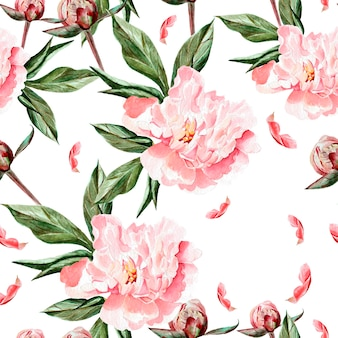 Padrão de aquarela com flores, peônias, botões e pétalas. ilustração