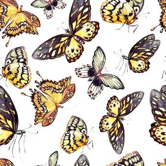 Padrão de aquarela com lindas borboletas. ilustração