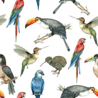 Padrão de aquarela de pássaro tropical