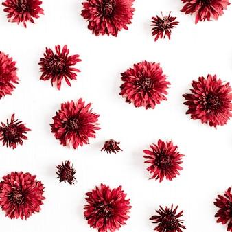 Padrão de botões de flores vermelhas. camada plana, vista superior. conceito de flores.