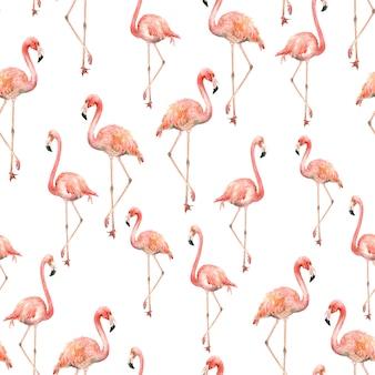 Padrão de flamingo aquarela