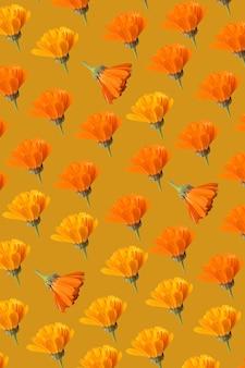 Padrão de flor em vaso de calêndula laranja