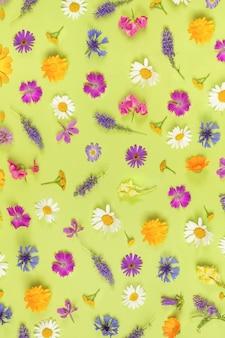 Padrão de flores silvestres coloridas sobre um fundo verde, como pano de fundo ou textura. primavera, papel de parede de verão para seu projeto. vista superior flat lay.