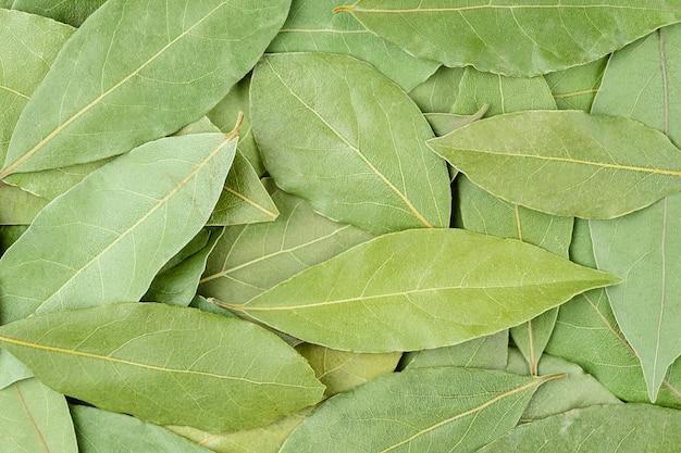 Padrão de folhas de louro secas. fundo de alimentos, vista superior.