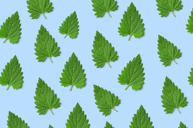 Padrão de folhas