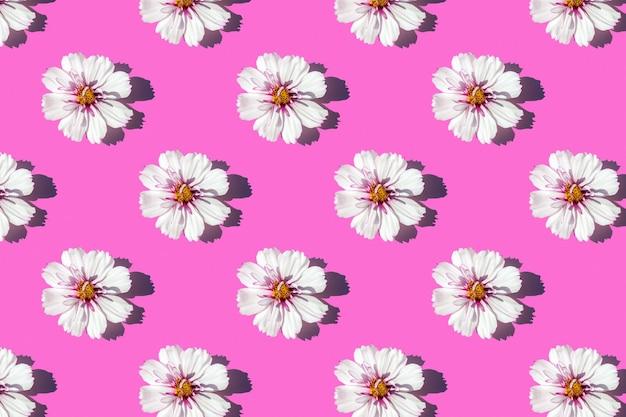 Padrão de luz solar moderno feito com flores delicadas em fundo rosa, como pano de fundo ou textura. conceito floral mínimo. papel de parede para o seu design