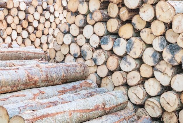 Padrão de madeira closeup na pilha de madeira velha madeira texturizada fundo