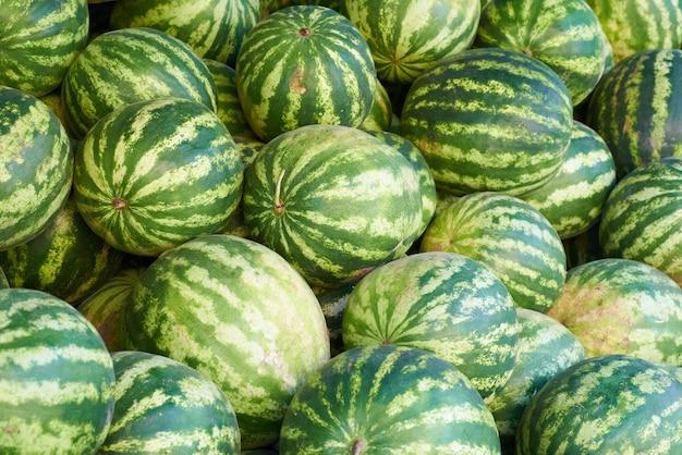 Padrão de muitas melancias verdes