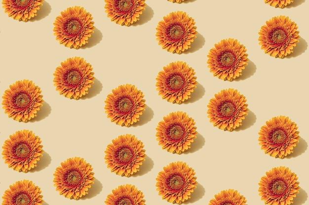 Padrão de outono na cor amarela e laranja. fundo mínimo da flor da margarida do outono. layout de outono criativo.