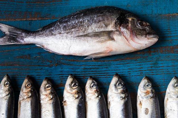 Padrão de peixe. peixes dos arenques e fih do seabass em um fundo de madeira azul velho.
