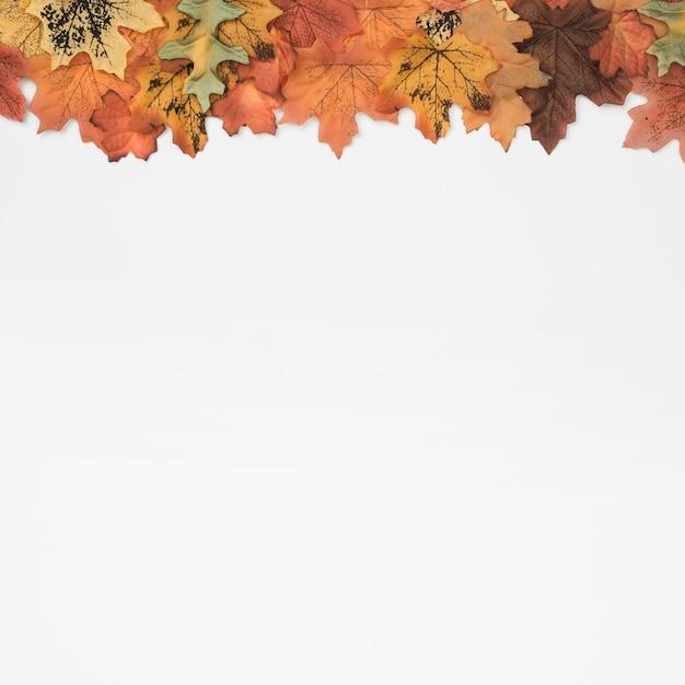 Padrão de quadro superior de folhas de outono