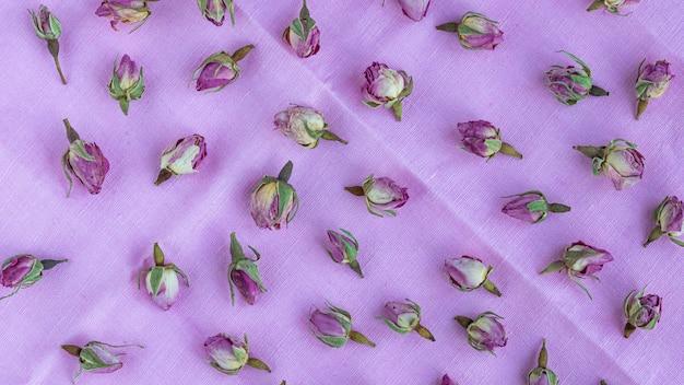 Padrão de rosas secas de rosa pastel em uma luz suave.