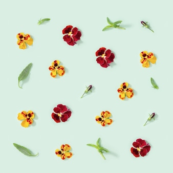 Padrão floral moderno com flores de amor-perfeito amarelas e vermelhas, folhas verdes, enfeites de estilo sazonal