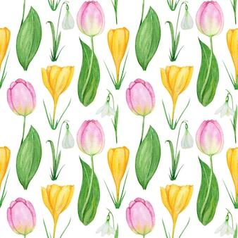 Padrão sem emenda com açafrão floco de neve e ilustração em aquarela de flores de primavera tulipa