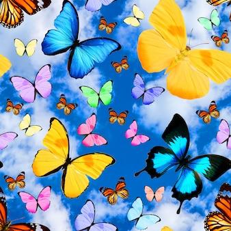 Padrão sem emenda com borboletas tropicais em um fundo de céu azul com nuvens