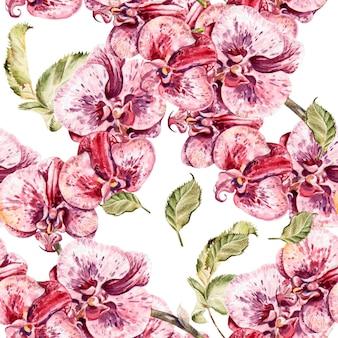 Padrão sem emenda com flores da orquídea e folhas. ilustração.