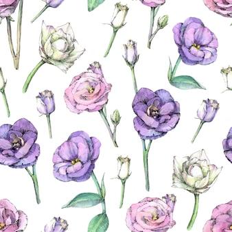 Padrão sem emenda com flores eustoma. pintados à mão em aquarela.