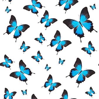 Padrão sem emenda de borboletas tropicais coloridas isoladas no fundo branco