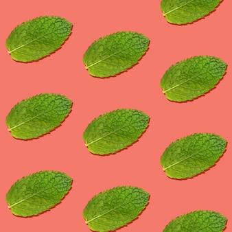 Padrão sem emenda de folhas de hortelã verde fresca em fundo rosa coral vívido