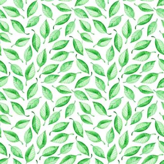 Padrão sem emenda de folhas verdes, isolado no branco aquarela floral