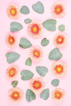 Padrão sem emenda de gerbera flor e folhas no fundo rosa