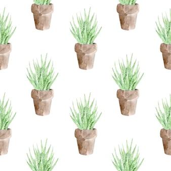 Padrão sem emenda de planta suculenta em vaso no fundo branco.
