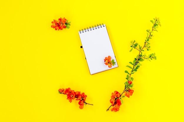 Página do caderno com flores vermelhas chaenomeles japonica ou marmelo em fundo amarelo, vista superior, plana leiga, maquete.