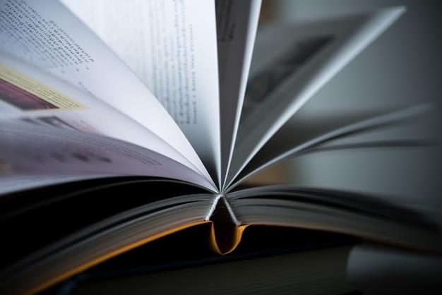 Página do conhecimento do livro romance intelectual