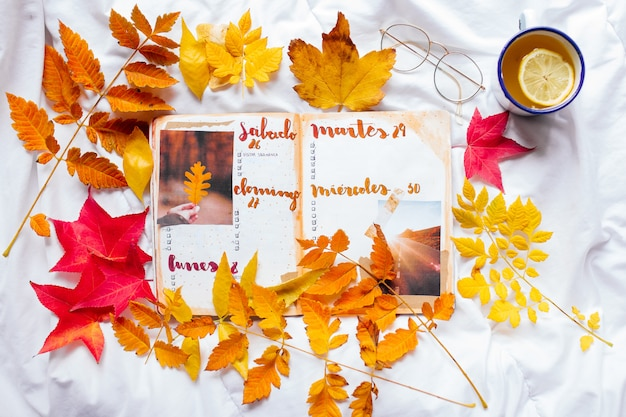 Páginas de bloco de notas em branco diário de bala em um espaço aconchegante com copo de esmalte de chá de gengibre limão, óculos e folhas de outono coloridas em um cobertor branco.
