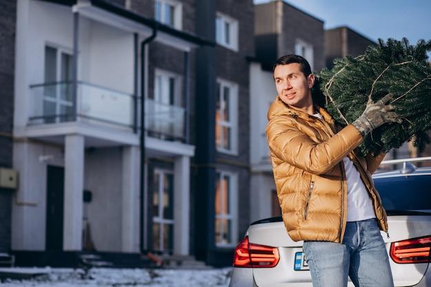 Pai carregando árvore de natal em casa