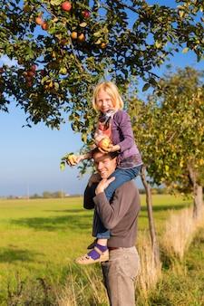 Pai e filha colhendo maçã no outono ou outono