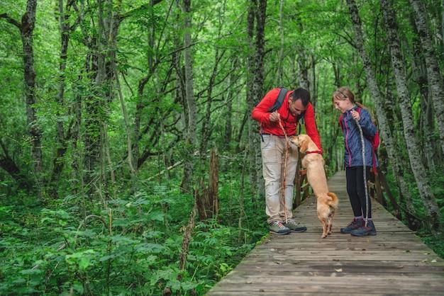 Pai e filha com um cachorro, caminhadas na floresta