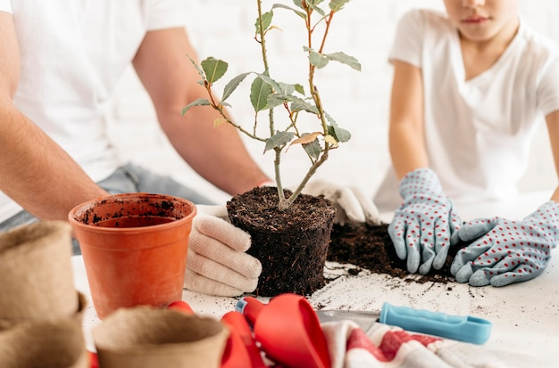 Pai e filho plantando plantas em casa juntos