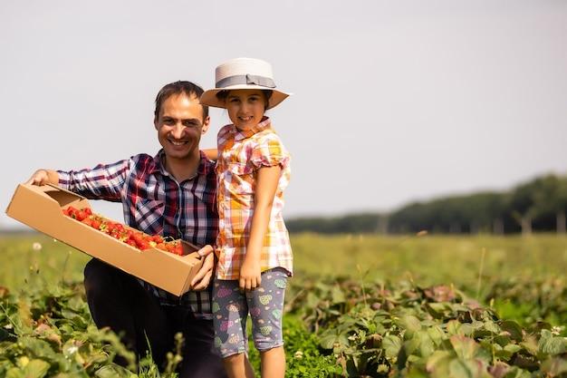 Pai e filho segurando morangos silvestres colhidos no verão