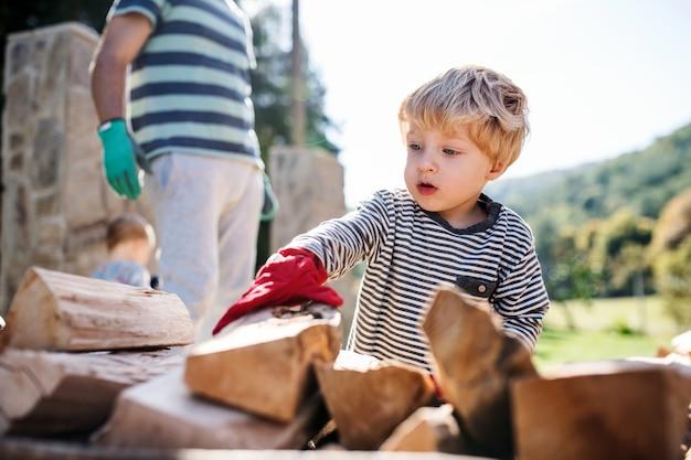 Pai irreconhecível e menino ao ar livre no verão, trabalhando com lenha.