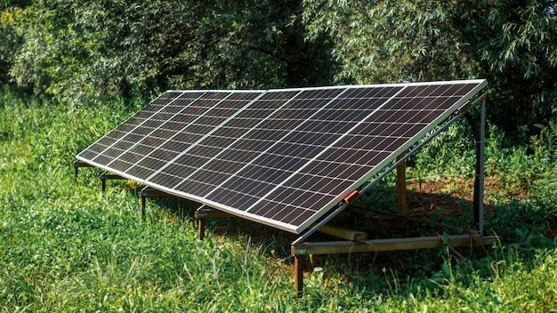 Painéis solares no chão na natureza. vegetação ao redor