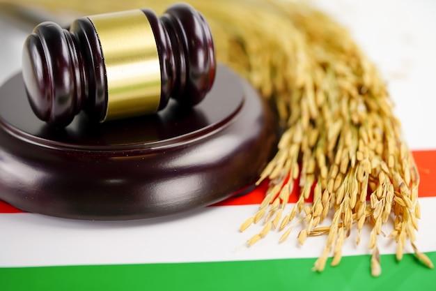 País de bandeira da hungria com martelo para advogado juiz.