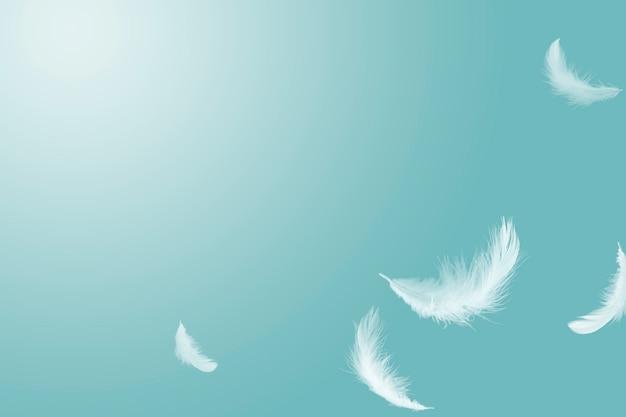 Pais macios e brancos flutuando no ar com espaço para texto.