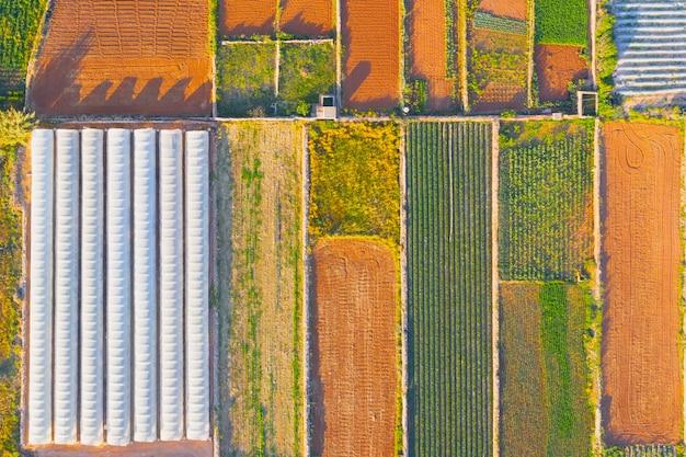 Paisagem agrícola aérea, campos separados por arbustos de plantas e ao lado da estufa.