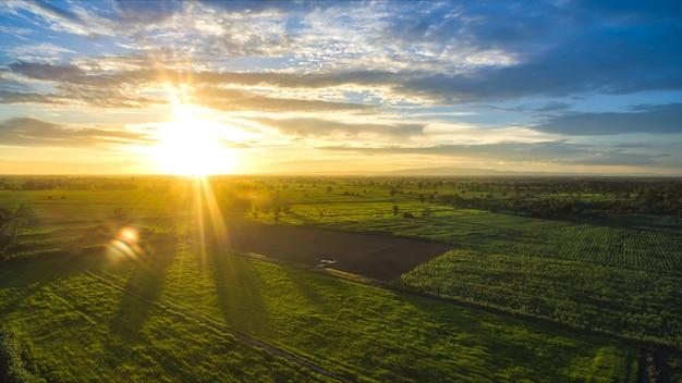 Paisagem agrícola amanhecer ensolarado em um campo