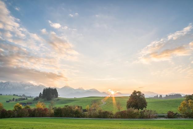 Paisagem agrícola com campos verdes e árvores