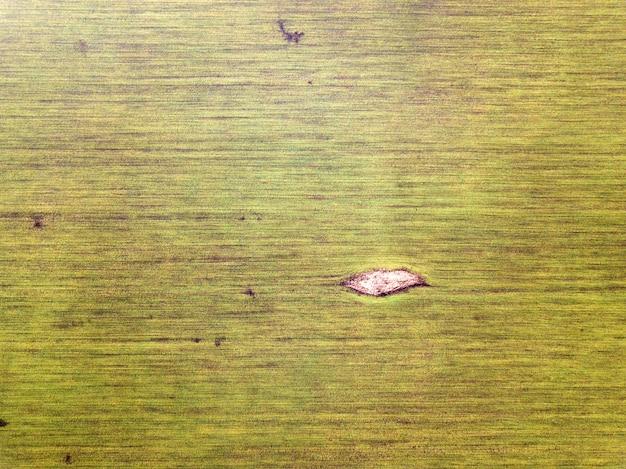 Paisagem agrícola, vista superior. campo de trigo verde ensolarado, fotografia de zangão, cópia espaço.