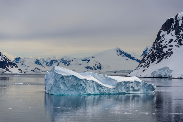 Paisagem antártica com icebergs e reflexão