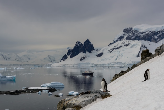 Paisagem antártica com reflexão