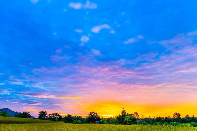Paisagem ao pôr do sol