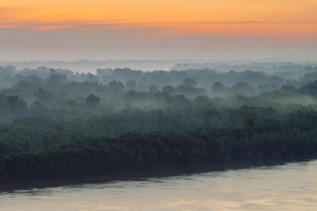 Paisagem atmosférica com floresta e nevoeiro ao nascer do sol