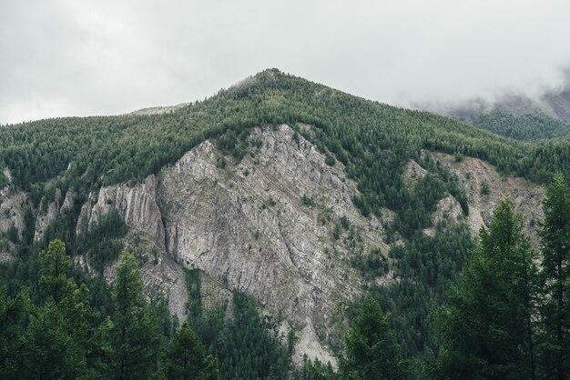 Paisagem atmosférica com parede de alta montanha com o pináculo da floresta no céu cinzento nublado. cenário incrível com topo de montanha verde em nuvens baixas. bela vista para a grande montanha rochosa com pico verde.