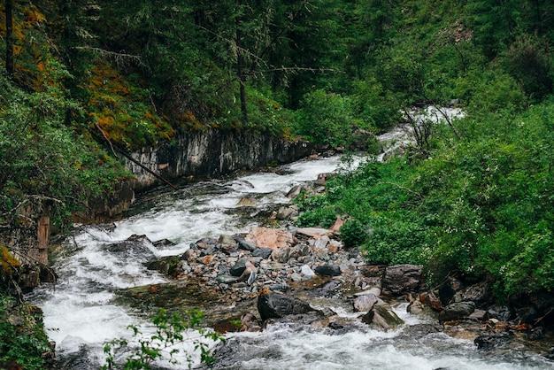 Paisagem atmosférica de floresta verde com riacho de montanha em vale rochoso