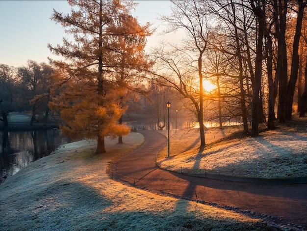 Paisagem atmosférica de manhã de novembro com nascer do sol, geada e estrada sinuosa no parque