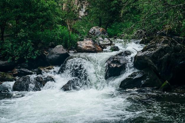 Paisagem atmosférica verde floresta com riacho de montanha. taiga belo mistério com rio selvagem. cenário vívido de frescor da floresta. vegetação rica ao longo do rio da montanha com corredeiras na floresta tenebrosa